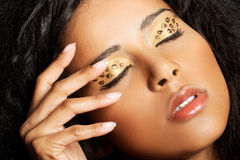 Close up on beautiful tiger make-up. Royalty Free Stock Photography