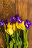 Close-up of beautiful tulips and irises on a dark wooden background Stock Images