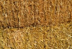 Straw texture as an autumn nature background. A close-up beautiful view to straw heap texture as an autumn natural background in a sunny day stock photos