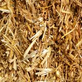 Straw texture as an autumn nature background. A close-up beautiful view to straw heap texture as an autumn natural background in a sunny day stock photo