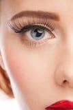 Woman eye with long eyelashes Royalty Free Stock Image