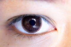 Close up of beautiful woman eye contact lens. Close up of beautiful woman eye and contact lens royalty free stock photography