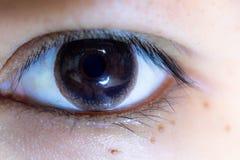 Close up of beautiful woman eye contact lens. Close up of beautiful woman eye and contact lens royalty free stock photos