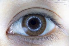 Close up of beautiful woman eye contact lens. Close up of beautiful woman eye and contact lens royalty free stock image