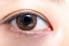 Close up of beautiful woman eye contact lens. Close up of beautiful woman eye and contact lens royalty free stock images