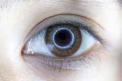 Close up of beautiful woman eye contact lens. Close up of beautiful woman eye and contact lens stock photography