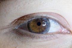 Close up of beautiful woman eye contact lens. Close up of beautiful woman eye and contact lens stock photo