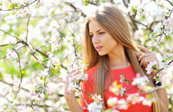 Close up of a beautiful woman face in blooming spring tree Royalty Free Stock Photo