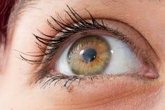 Close up of a beautiful woman green eye Royalty Free Stock Photo