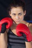 Close up of a beautiful woman in red boxing gloves Royalty Free Stock Photography