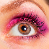Close-up of a beautiful woman's eye Stock Images