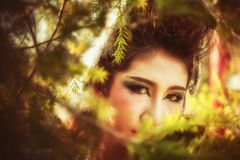 Close up of beautiful young woman posing in forest royalty free stock images