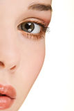 Close up beauty Stock Images