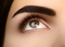 Free Close-up Beauty Of Woman`s Eye. Smoky Eyes Makeup With Brown Eyeshadows. Perfect Strong Shape Of Eyebrows Royalty Free Stock Photos - 102041258
