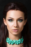 Close-up beauty portrait of young pretty brunette. Model with fashion smokey eyes make-up Stock Images