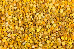 Close up of bee pollen Royalty Free Stock Images