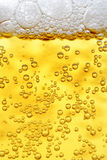 Close up of beer. Macro shot Stock Photos