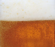 Close-up beer Royalty Free Stock Image