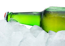 Close-up Beer Bottle cool in ice  on white background Stock Image