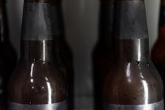 Close up Beer bottle without logo in refrigerator stock photos