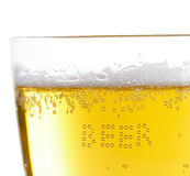 Close up of beer bubbles Stock Photography