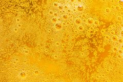 Close up of beer bubbles and foam as a background. Droplets on freshly poured beer texture stock images