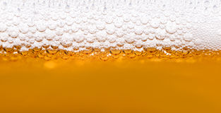 Close up of beer bubbles Royalty Free Stock Photo