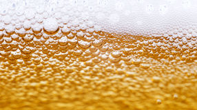 Close up of beer bubbles Stock Photos