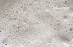 Close up of Beer foam Stock Photo