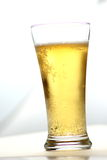 Close up of beer glass with bubbles Stock Images