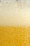 Beer with Rich Foam and Bubbles of Gas Stock Photography
