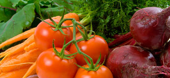 Close up of Beetroot, Carrots and Tomatoes Stock Image