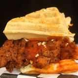 Close-up of Belgian waffle sandwich with hot battered chicken, feta cheese, hot sauce and spices Royalty Free Stock Images