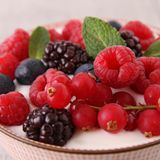 Close up on berries Royalty Free Stock Photography