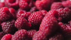 Close Up Berry. Fresh, Juicy Raspberry Background, Ripe. Macro Red Raspberries Fruit. Fresh Raspberry Fruits As Food. Dackground. Healthy Food Organic Nutrition stock video