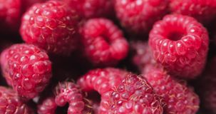 Close up berry. Fresh, juicy raspberry background, ripe. Macro red raspberries fruit. Fresh raspberry fruits as food. Background. Healthy food organic nutrition stock video