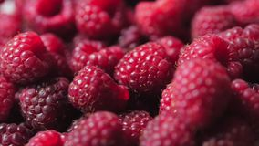 Close up berry. Fresh, juicy raspberry background, ripe. Macro red raspberries fruit. Fresh raspberry fruits as food. Background. Healthy food organic nutrition stock footage