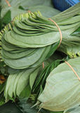 Close up betel leaf on the market. Shallow depth of field Stock Photography