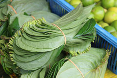 Close up betel leaf on the market. Shallow depth of field Royalty Free Stock Photos