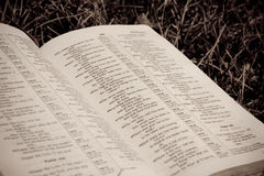 Close-up of Bible in the Grass Stock Photography