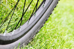 Close up of bicycle wheel on green grass. In sun light Royalty Free Stock Images