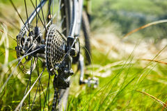 Close-up of the bicycle wheel in the summer green grass in the field. Royalty Free Stock Photography