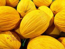 Close up of a big box of Melons at the super market Royalty Free Stock Photography
