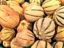 Close up of a big box of Melons at the super market Stock Photography