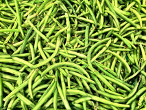 Close up of a big box of peas plants at the super market Stock Photography