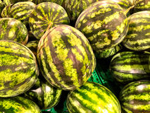 Close up of a big box of watermelons at the super market Stock Photos