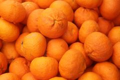 Big pile of ripe clementines royalty free stock images