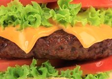 Close up of big tasty hamburger. Stock Images