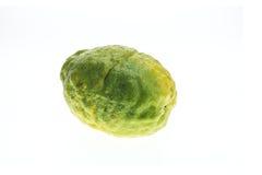 Close up big Thai green lemon isolated on white Stock Image
