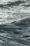Close up of big Wave in the arctic ocean Stock Photography